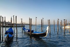 Gondolas of Venice in italy. The famous gondolas of Venice in italy Stock Image
