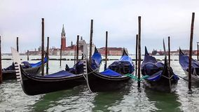 Gondolas in Venice, Italy. Quay at St Mark's Square with gondolas floating and the view to San Giorgio Maggiore Island in a cloudy spring afternoon stock video footage