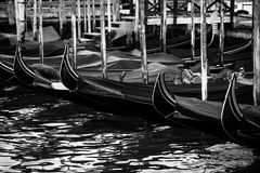 Gondolas in Venice, Italy at sunrise Stock Images