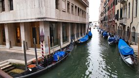 Gondoler som eatly parkeras på kanalen av Venezia i morgonen arkivbild