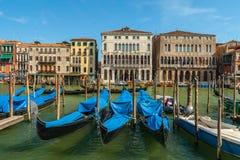 Gondoler som väntar på turister, Venedig, Italien Arkivbild