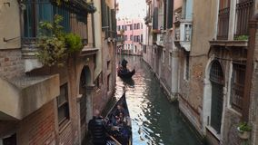 Gondolero en turistas de un paseo de la góndola en el agua en Venecia metrajes