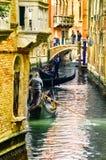 Gondolero veneciano que lleva en batea la góndola a través de las aguas verdes del canal de Venecia Italia imagen de archivo libre de regalías