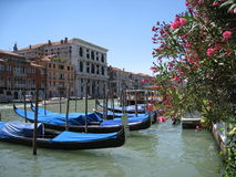 Gondoles sur le Grand Canal Stock Photos
