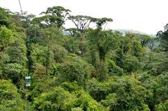 Gondoli przejażdżka w Costa Rica tropikalnym lesie deszczowym Zdjęcia Royalty Free