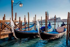 Gondolier carries tourists gondola Grand Canal of Venice, Italy. royalty free stock images