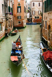 Gondolier forwards the tourists on the gondola on the canal in Venice, Italy, summer day. Royalty Free Stock Photography