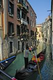 Gondolier with striped shirt Royalty Free Stock Photo