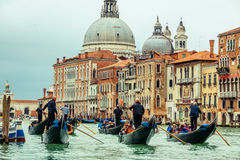 Gondoliers, Grand Canal in Venice Royalty Free Stock Photography