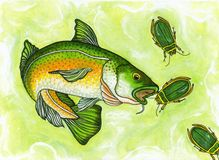 Gone fishing. A painting of a fish catching beatles by pickle Lilly Stock Photography
