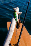 Gone Fishing Concept Royalty Free Stock Photography