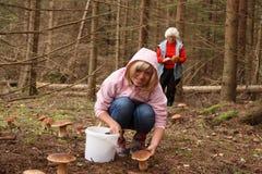 Gone mushrooming Stock Photo