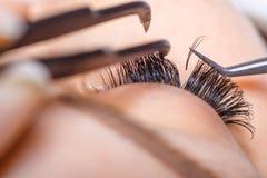 Ögonfransförlängningstillvägagångssätt Kvinnan synar med långa ögonfranser Snärtar slut upp, makro, selektiv fokus Arkivfoto