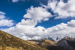 Gongga snow mountain royalty free stock photos