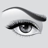 ögonkvinna Arkivfoto