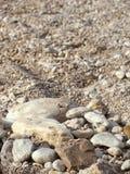 Gont plaża Obraz Stock