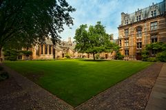 Gonville and Caius College Royalty Free Stock Image