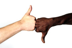 Good or Bad. Black and White males with thumbs up and down Stock Photography
