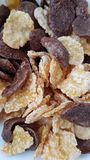 A good cornflakes breakfast. . royalty free stock images