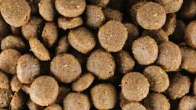 Good crunchy biscuits for dogs. Crunchy brown biscuits bio snack for dogs stock video