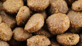 Good crunchy biscuits for dogs. Good crunchy bio biscuits for dogs stock video footage