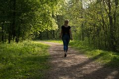 A good day for walks and the joy of the freshness of the air and nature. stock images