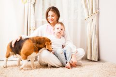 Good family photo. Sister take care of her brother and their dog at home Royalty Free Stock Photography