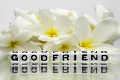 Good friend Stock Image