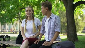 Good friends sitting on bench and talking, remembering past moments, funny story. Stock footage stock video footage