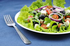 A good greek Salad Royalty Free Stock Images