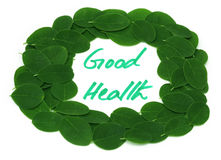 Good Health written in Moringa leaves frame Royalty Free Stock Images