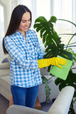 Good-looking charwoman in gloves cleaning leaves of houseplant. Mid shot of good-looking charwoman in gloves cleaning leaves of houseplant royalty free stock image