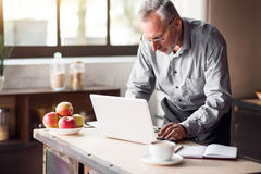 Good-looking enterpreneur working on laptop while having coffee and breakfast Royalty Free Stock Photography