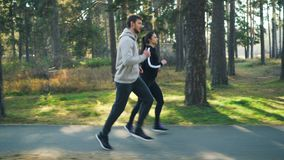 Girl and guy in tracksuits are jogging in park on autumn day enjoying healthy activity and beautiful nature. Trees and. Good-looking girl and guy in tracksuits stock video