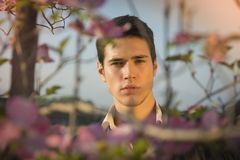 Good looking male model at countryside, among Stock Photography