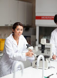 A good looking science student using a microscope Royalty Free Stock Photography