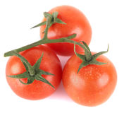 Good Looking Tomatoes Stock Photo