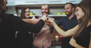 Good looking young group of multi ethnic people have a party time the cheers with wine glasses smiling large and feeling stock video
