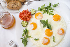 Good loooking tasty breakfast- fried eggs decorated with green parsley, mint, tomato, cucumber Stock Images