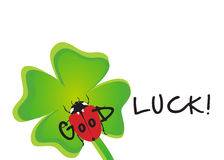Good Luck. Greeting Card showing a shamrock with a ladybug wishing good luck Royalty Free Stock Photos
