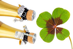 Good luck. Champagne and lucky clover over a white background Royalty Free Stock Photography