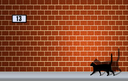 Good luck or bad luck?. Black cat with its shadow projected on a bricks wall and number 13 Royalty Free Stock Images