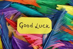 Good luck. Beautiful shot of good luck written on paper with background made of feathers royalty free stock photos