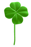 Good luck - four leaf clover Royalty Free Stock Photos