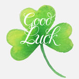 Good luck four leaf clover. Royalty Free Stock Photography