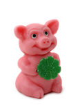 Good luck pig stock photo