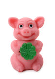 Good luck pig Stock Images