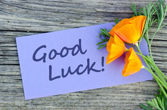 Good luck. Poppy and violet card with lettering good luck royalty free stock images