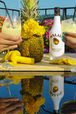 A good Malibu cocktail with Pineapple. A portrait with a pineapple,flowers and Malibu Rum Royalty Free Stock Photos