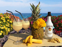 A good Malibu cocktail with Pineapple. A portrait with a pineapple,flowers and Malibu Rum Royalty Free Stock Photo